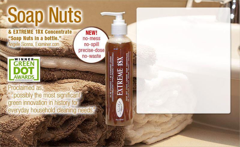 Soapnuts-20100324